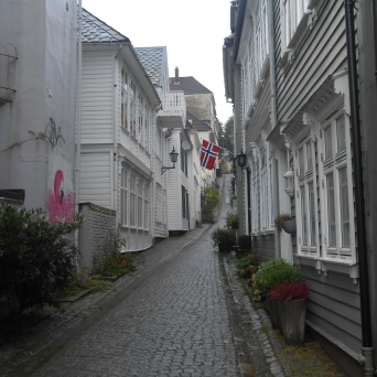 Ruelle du Vieux Bergen